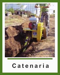 Catenaria Carlson